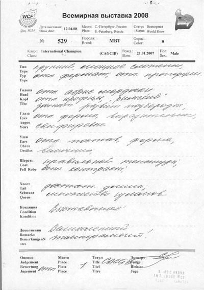 Оценочный лист Зембо за 12.04